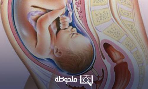 الجنين في الشهر الثامن